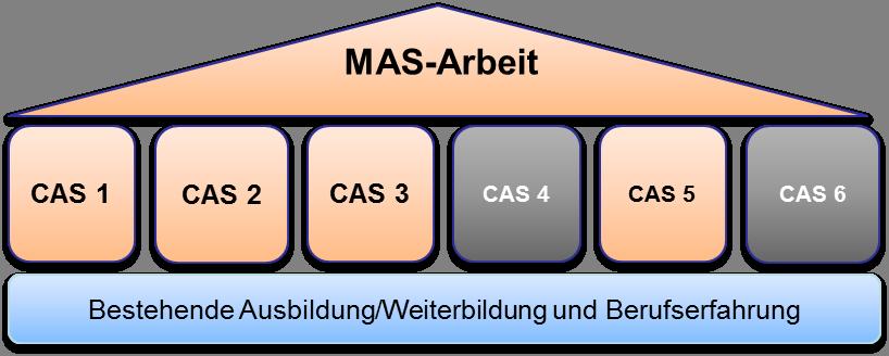 MAS-Arbeit